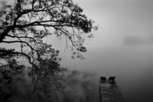 """Kaupo Kikkas püstitas fotonäitamise käigus mitmeid huvitavaid küsimusi nagu """"kas muusikat ennast saab pildistada?"""". Ja vastas sellele oma kunstipäraselt monokroomsete metsafotodega, et need pidid väljendama vaikuse rütme ja pulseerimist."""