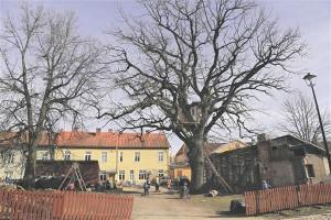 Viljandi vanalinna õu ei ole pelgalt avalik atraktsioon, millele möödakäija pilgu peale viskab  ja seejärel pealiskaudse hinnangu andnuna edasi kihutab.