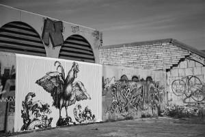 Linnahall on viljakas pind grafititegijatele.