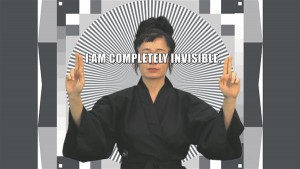 Hito Steyerli videos demonstreeritakse virtuaalse arvutimängu näota figuure ja Steyerlit ennast, kes, kimono seljas, seisab rohelise ekraani kõrval ja demonstreerib kadumise tehnikaid kujunditest küllastunud maailmas.