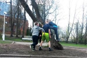 Linnas võiks puu otsa ronimine olla normaalne asi, nagu ka poriloigus solberdamine.