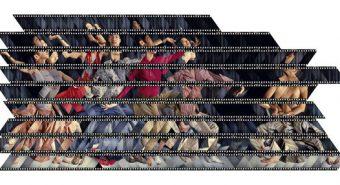 Prateep Suthathongthai. Hiigelahv. Diapositiiv valguskastil, 2004.