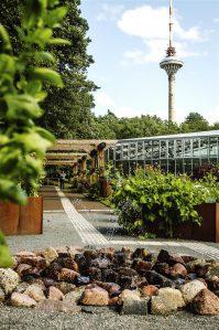 Meelte aed Tallinna botaanikaaias